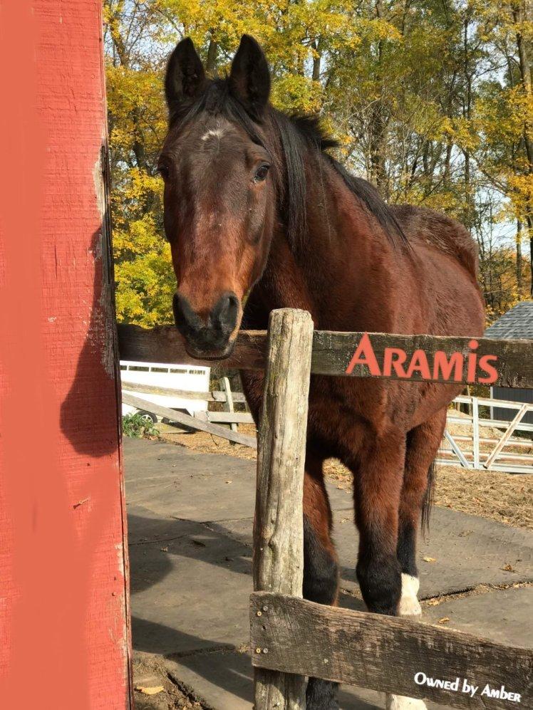 aramis4